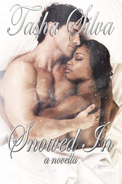 Snowed In: a Novel – Middle Child Press