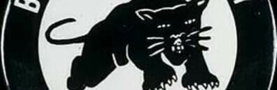 Original Black Panther Party Cover Image