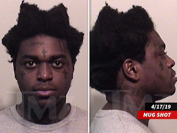 KODAK BLACK PLEADS GUILTY IN FEDERAL GUN CASE – REDZONE NEWS